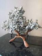 Image result for aluminium ant hill art